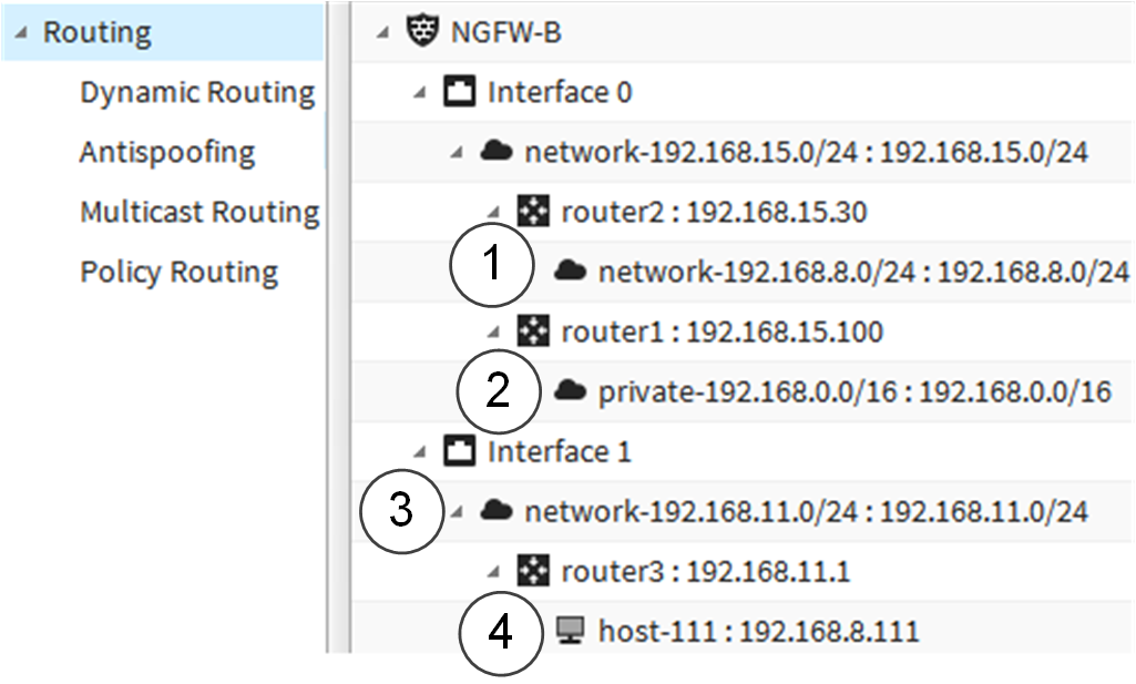Examples of route selection and antispoofing definitions